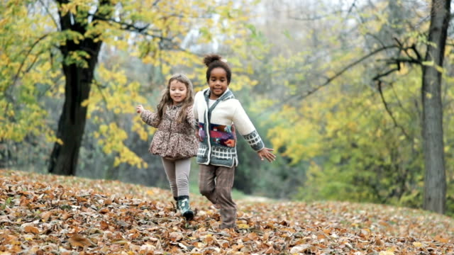 vídeos de stock e filmes b-roll de two carefree girls having fun while holding hands and running in autumn day at the park. slow motion. - amizade feminina