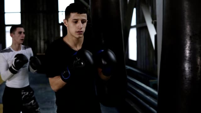 two caucasian young male boxers in casual clothes are beating the black boxing pears. hardworking, training process at boxing gym. side view. slow motion - sparring allenamento video stock e b–roll