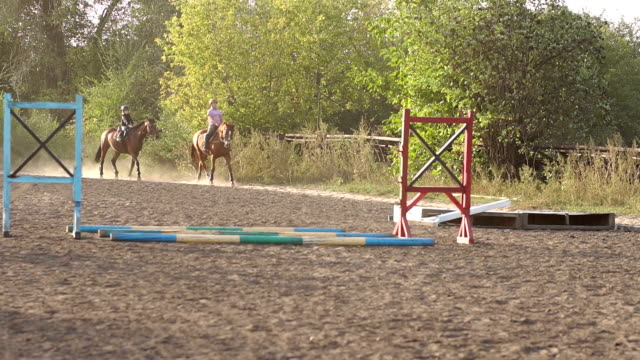 two children are engaged in equestrian sport. - briglia video stock e b–roll
