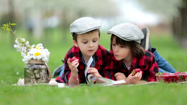 Two children, boy brothers, reading a book and eating strawberries in the park, spring blooming garden video