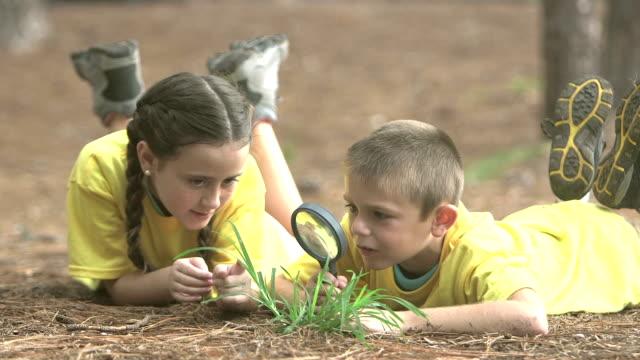 två barn i parken undersökande bugg med förstoringsglas - ligga på mage bildbanksvideor och videomaterial från bakom kulisserna