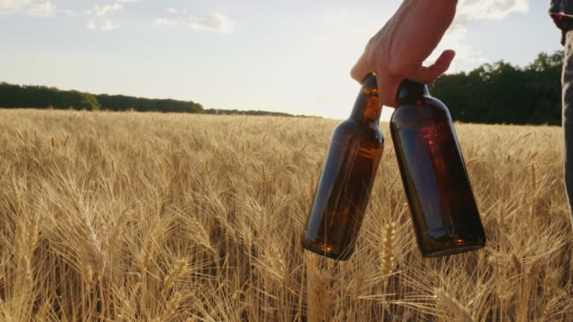 Two cold beer bottles on a hot day. The man carries a barley field against the background, the setting sun beautifully illuminates video