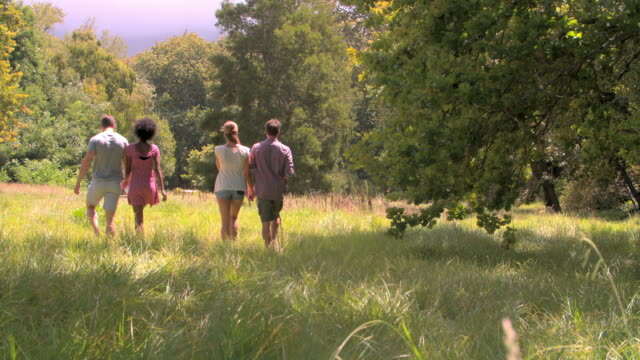 Two couples walking together in the countryside video