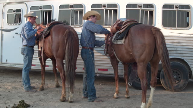 two cowboys preparing their horses to horseback riding in utah, usa - rancher video stock e b–roll