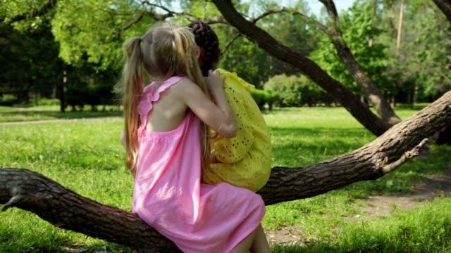due graziose bambine sedute e che oscillano sul ramo degli alberi nel parco il giorno d'estate. ragazza bionda con due code di cavallo che sussurrano segreti all'orecchio dell'amico - ear talking video stock e b–roll