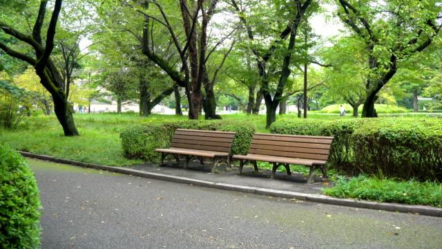 vídeos de stock e filmes b-roll de two empty park benches - parque público