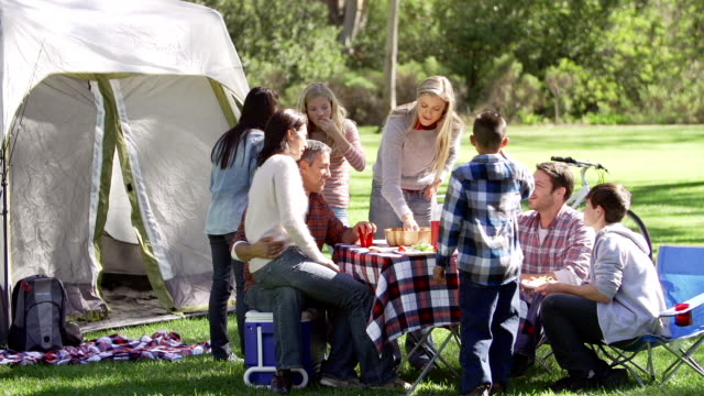 two families enjoying camping holiday in countryside - picnic stock videos and b-roll footage