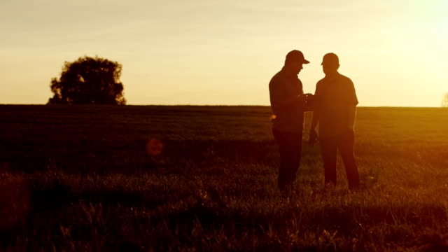 Two farmer workers communicate in the field, use a tablet. At the beautiful sunset video