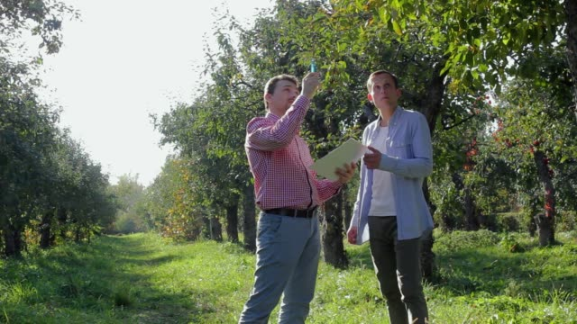 Two farmers preparing to conclude an agreement in the apple orchard Two farmers preparing to conclude an agreement in the apple orchard. A pair of rural businessmen sign papers on a background of green trees salesman stock videos & royalty-free footage