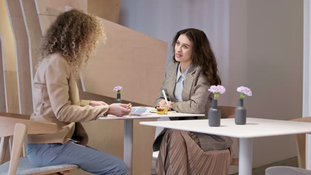 two female colleagues having meeting - direttrice video stock e b–roll