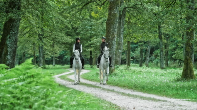 DS Two female friends enjoying riding white horses in forest