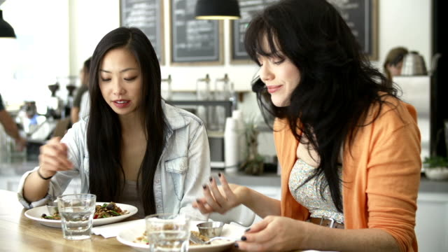 Two Female Friends Meeting For Lunch In Coffee Shop video