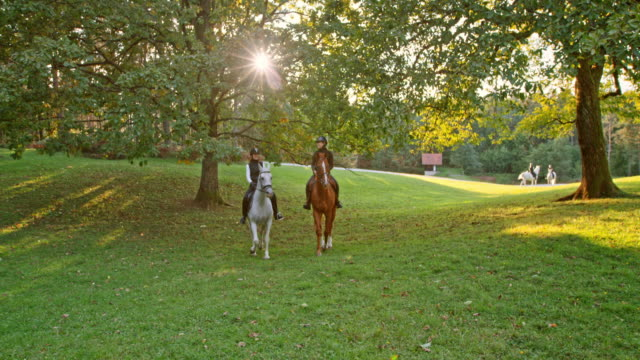 slo mo two female friends riding horses in orchard - attività equestre ricreativa video stock e b–roll