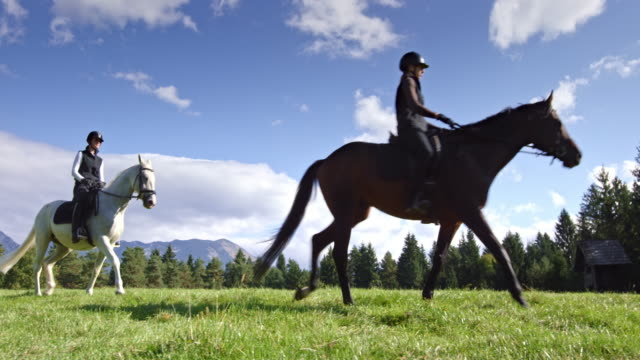DS Two female friends riding their horses across mountain meadow video