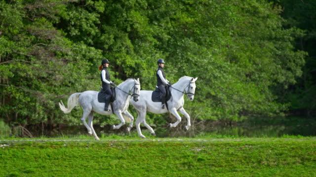 湖で馬に乗っている slo mo ts 2 人の女性ライダー - 動物に乗る点の映像素材/bロール