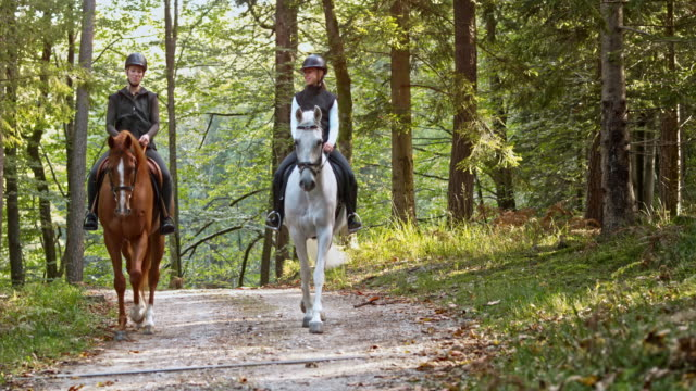 PAN Two female riders talking on a horseback ride in forest Wide panning shot of two women talking on a horseback ride through forest. horseback riding stock videos & royalty-free footage