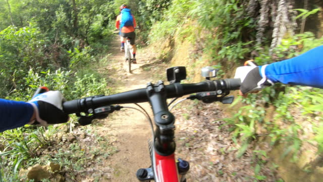 two friends cross country mountain biking in tropical forest. pov point of view .4k - percorso per bicicletta video stock e b–roll