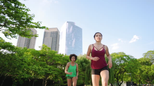 Two girlfriends on morning exercise at the park video
