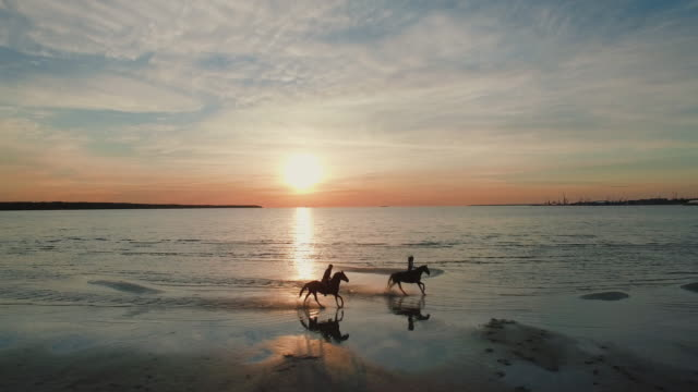 two girls are riding horses on a beach. horses run towards the sea. beatiful sunset is seen in this aerial shot. - лошадиные стоковые видео и кадры b-roll