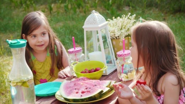 vídeos de stock e filmes b-roll de two girls eat strawberries on a summer picnic - limonada tradicional