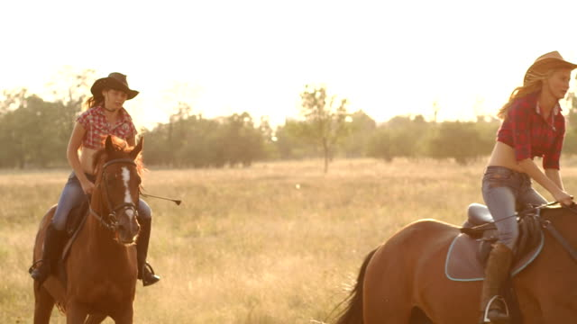 due ragazze che cavalcano un cavallo in un campo al tramonto. - stallone video stock e b–roll