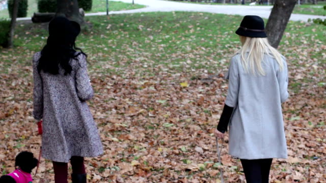 Two girls walk in the park video