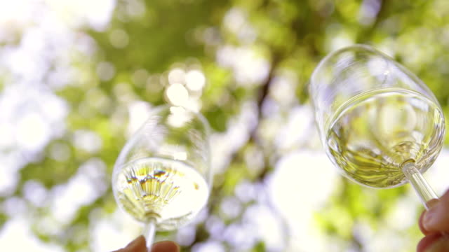 Two glasses of white wine clink on a summer day with the background of green trees video