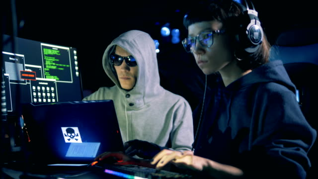 Two hackers are working together with computers Two hackers are working together with computers. 4K identity theft stock videos & royalty-free footage