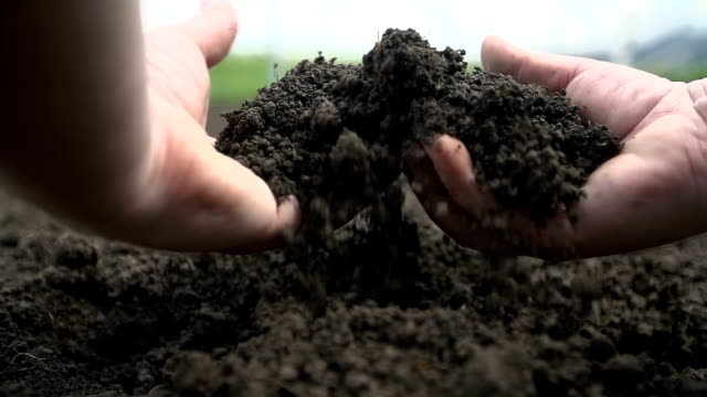 Two hands grabbing soil and letting it to fall back video