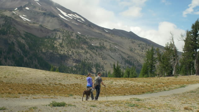 Two hikers and their dog walk together video