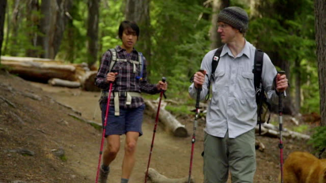 Two hikers and their dog walk toward camera video