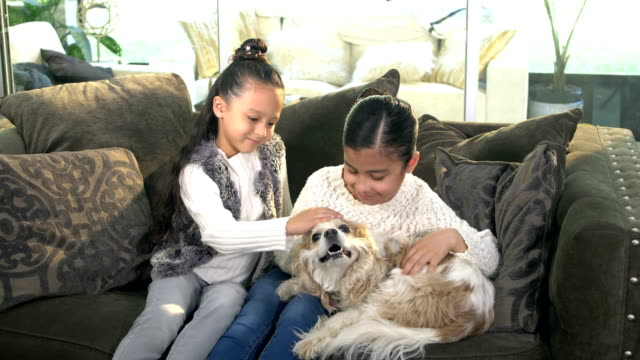 Two Hispanic sisters joined by dog on couch