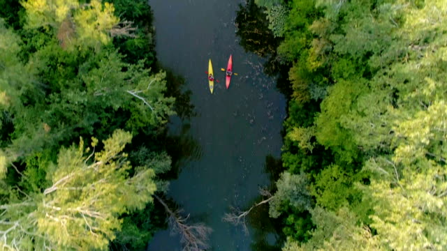 zwei kajaks sind an einem malerischen fluss entlang segeln. luftaufnahme. - kanu stock-videos und b-roll-filmmaterial
