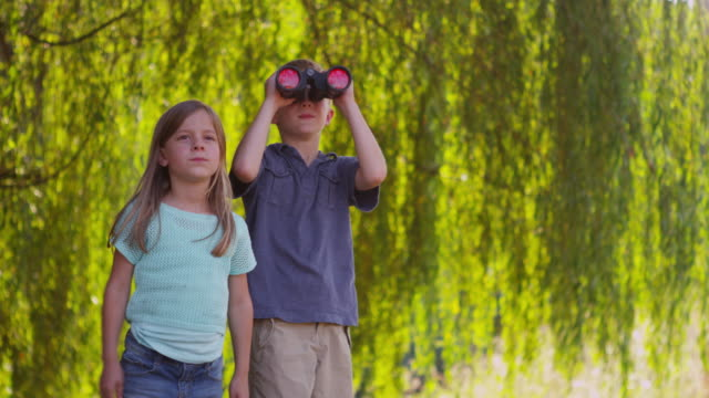 two kids looking through binoculars - four seasons filmów i materiałów b-roll