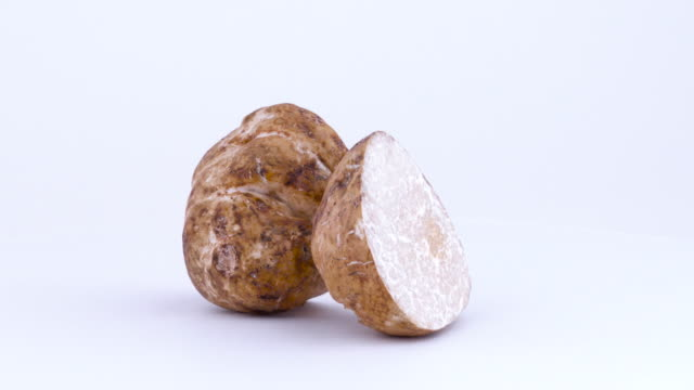 two large white truffle mushroom halves rotating on the turntable isolated on the white background. closeup. macro. - alta moda italy video stock e b–roll