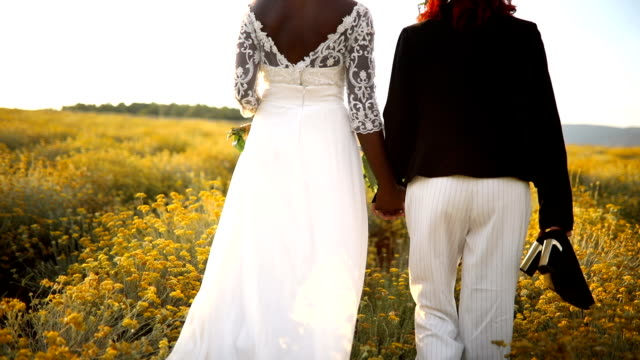 Two lesbian brides walking in the flower field Black and white lesbian brides, holding hands, joyful walking in the yellow flower field in sunset. Rear view lesbian stock videos & royalty-free footage