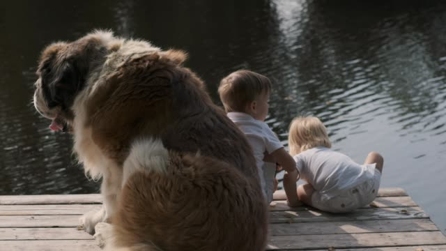 Two little boys and a big dog on the pier near the river. Dog guards children