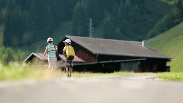 風光明媚な山への道を二人の小さな子供のバックパックと少年兄弟旅行夏 ビデオ