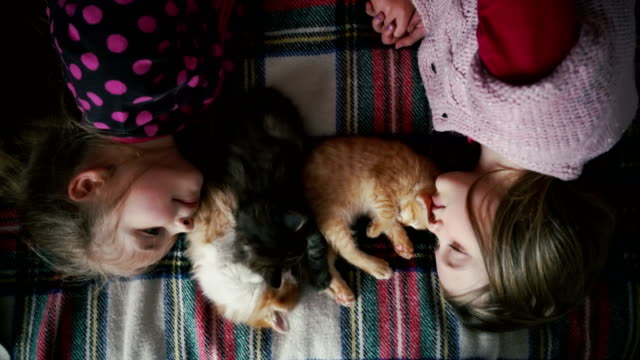 Two little girls playing with kittens on the bed