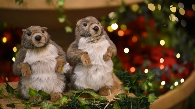 Two Marmot Puppets on Christmas Background