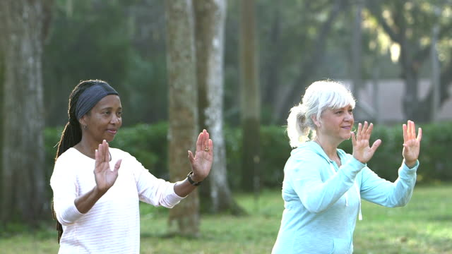 Two mature women practicing tai chi in the park video