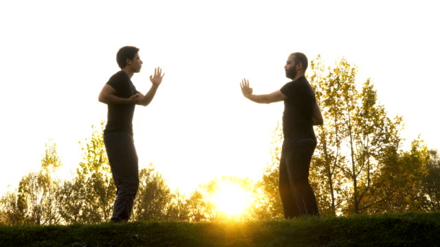Two men in public park exercising the martial arts Two men in public park exercising the martial art of Wing Chun Kung Fu // 4K 3840x2160 / 29.97p / Photo-JPEG / Real Time / martial arts stock videos & royalty-free footage