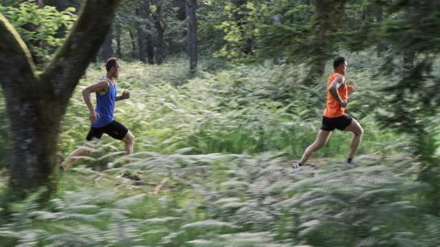 SLO MO DS Two men running on a forest trail video