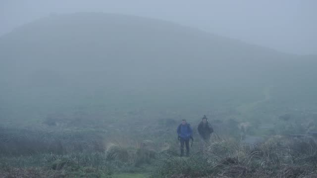 Two men walking on a hiking trail through Skomer Island, Pembrokeshire Coast National Park, Wales