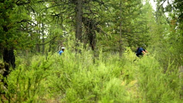 vidéos et rushes de deux cyclistes travers la forêt que - randonnée équestre