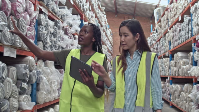 two multi-ethnic female workers checking the stock items at warehouse - apprendista video stock e b–roll