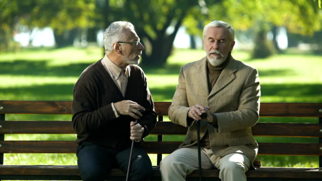 Two old men emotionally talking and arguing, disagreement and misunderstanding