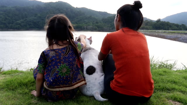 two owner and funny american bully dog in the relaxing time video