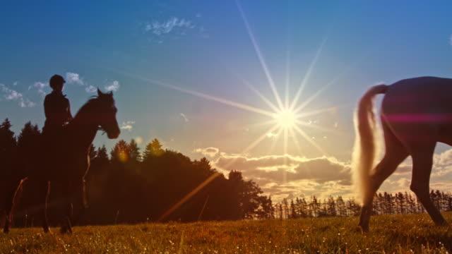 日没時に馬に乗っている ds 2 人 - 動物に乗る点の映像素材/bロール