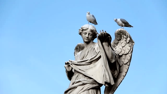 two pigeon over a statue in Rome video